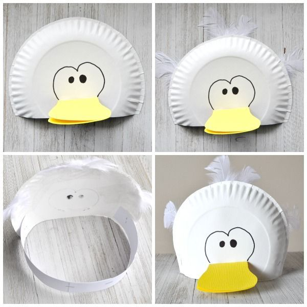 Silly Paper Plate Bird Hats Your Kids will Love  sc 1 st  Pinterest & Silly Paper Plate Bird Hats Your Kids will Love | Crafty Bird and ...