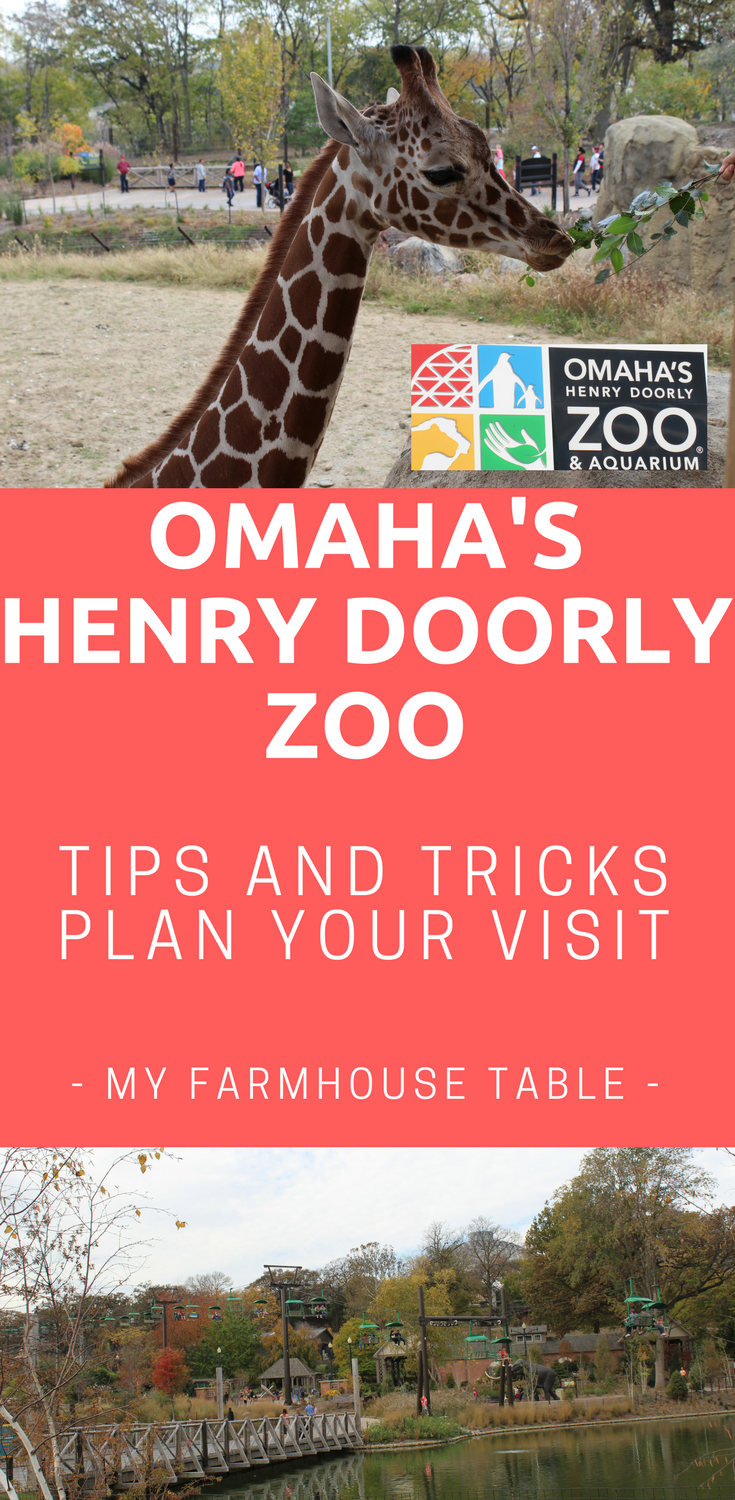 Omaha Henry Doorly Zoo Tips and Tricks to Plan Your Visit Omaha Nebraska Travel Guide What to Do in Omaha Nebraska Travel Nebraska Things to do in Omaha ... & Omaha Henry Doorly Zoo Tips and Tricks to Plan Your Visit | Zoos and ...
