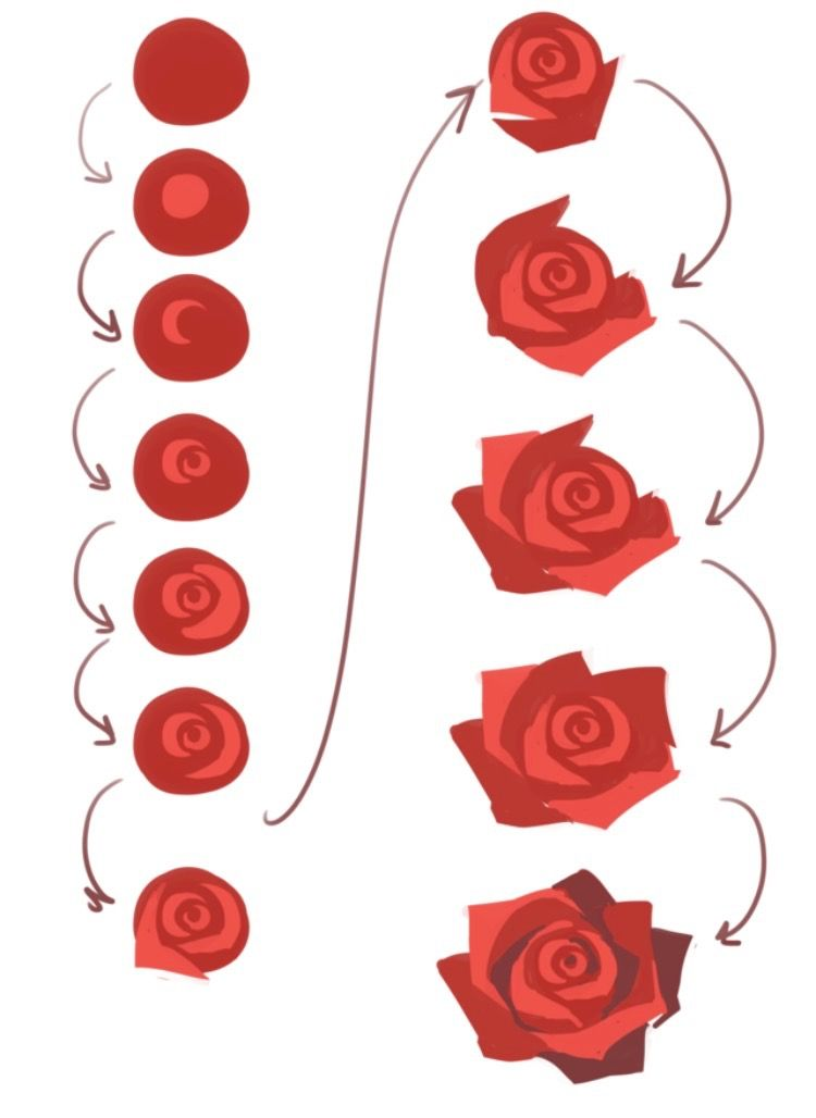 Paint An Easy Rose Step By Step Flower Drawing Flower Art Rose