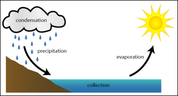 Water Cycle Thinglink Water Cycle Game Water Cycle Water