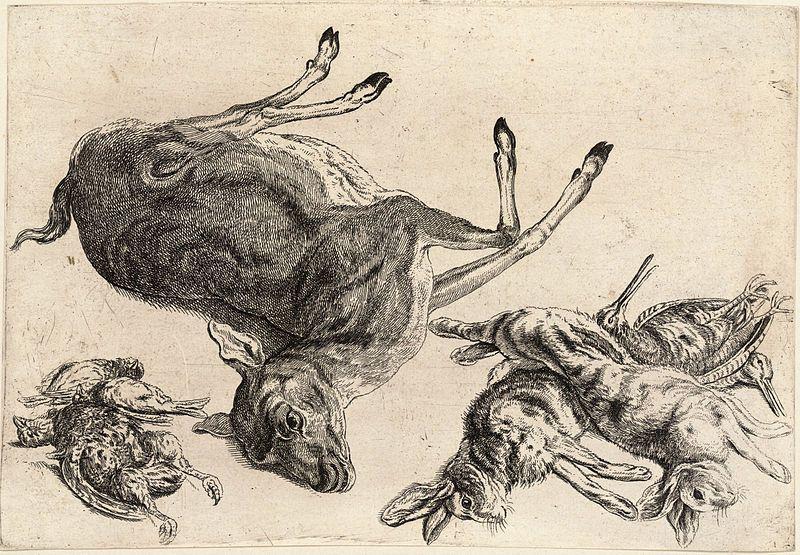 File:Wenceslas Hollar - A dead deer and dead game.jpg