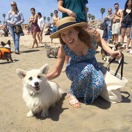 A Glorious Peek At Corgi Beach Day— Yes, It's A Real Thing