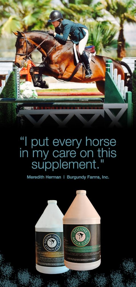 """For 2015 I put all of my horses that were competing at"