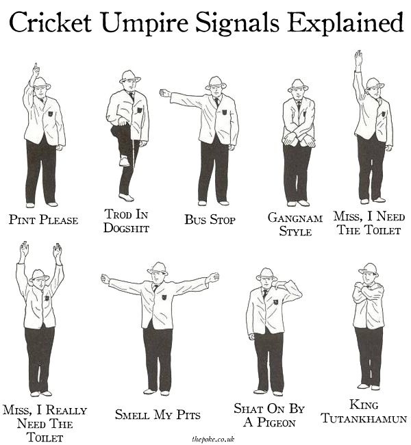 """""""The Ashes begin today, so let's take the time to brush up on what some of the more common umpire signals actually mean."""" via The Poke"""