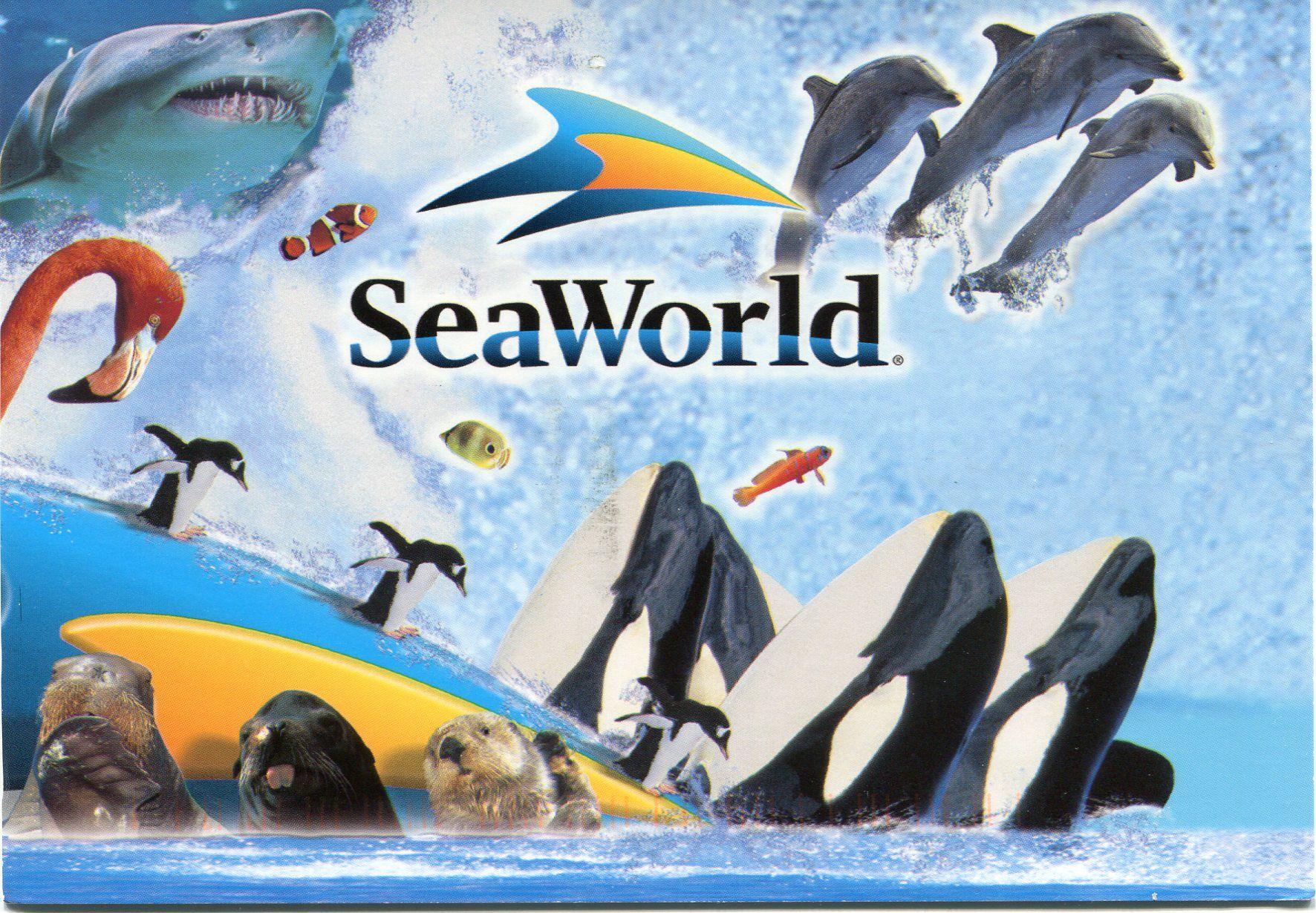 Sea World Sea World Seaworld Orlando Seaworld San Diego
