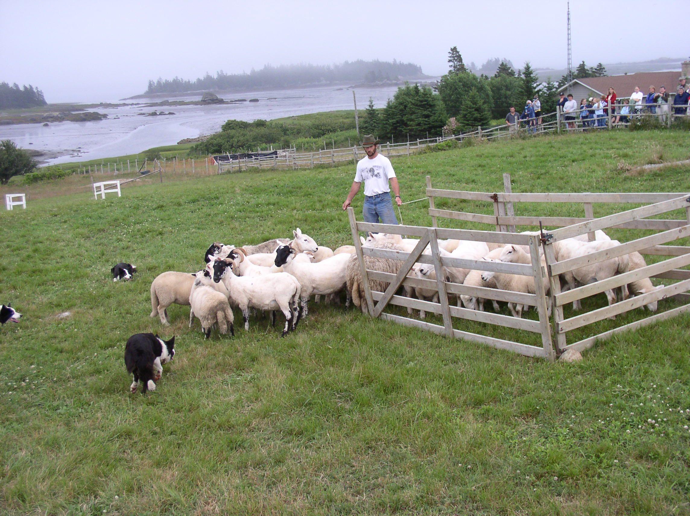 Historical Acadian Village of Nova Scotia Nova scotia