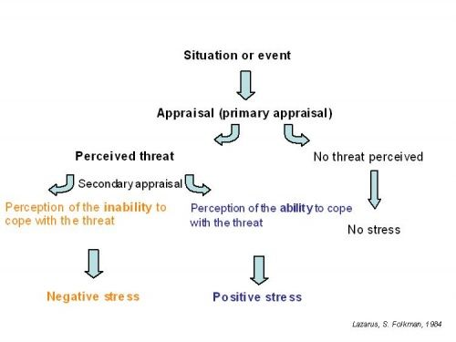 what is the transactional model of stress
