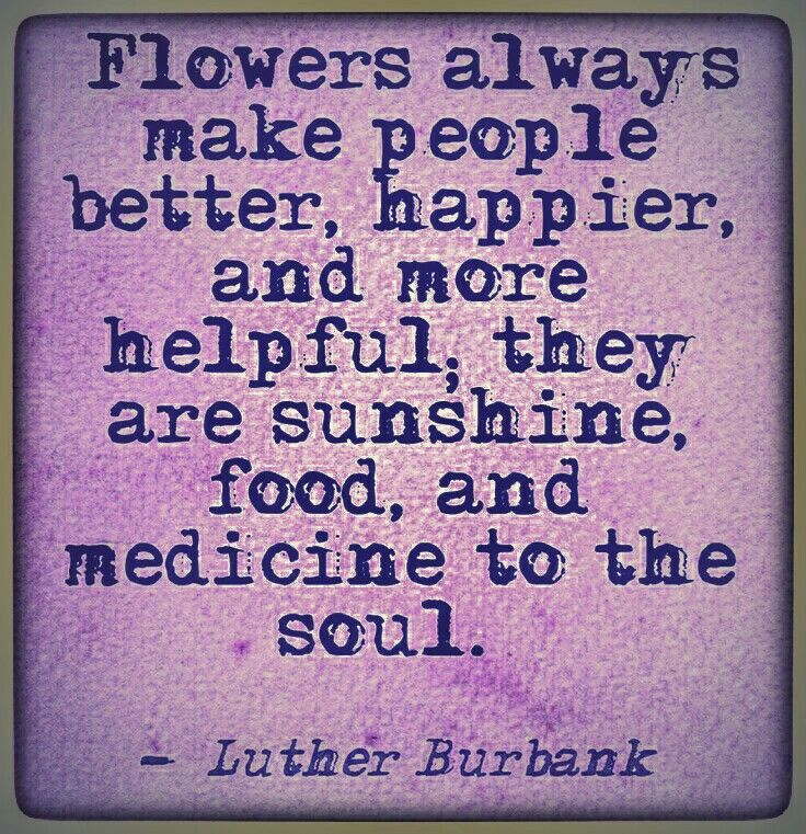 If theyre not picked well said pinterest flower qoutes flowers always make people better happier and more helpful they are sunshine food medicine to the soul mightylinksfo