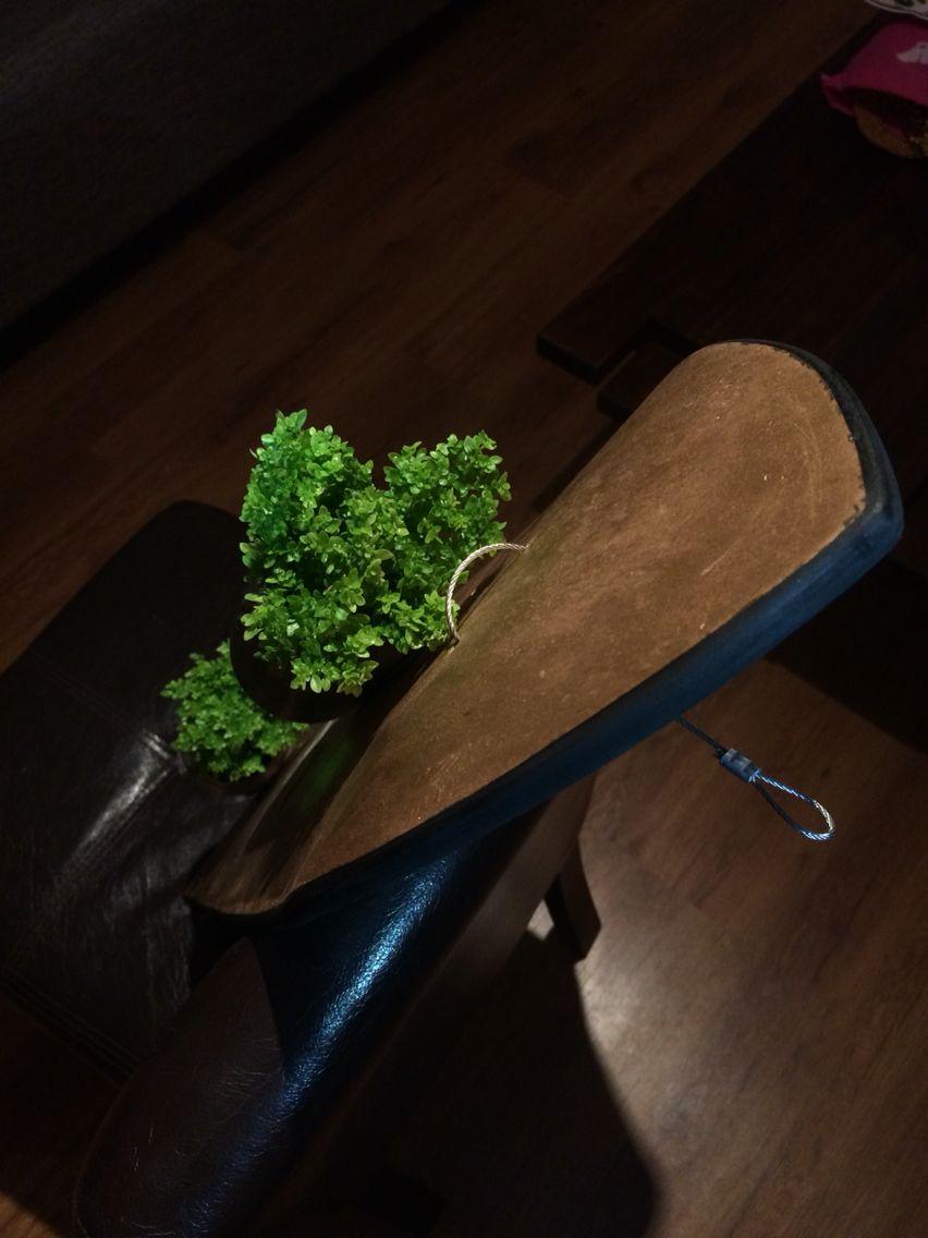 Jean Enrech desing planta lentejitas skate sostenible handmade