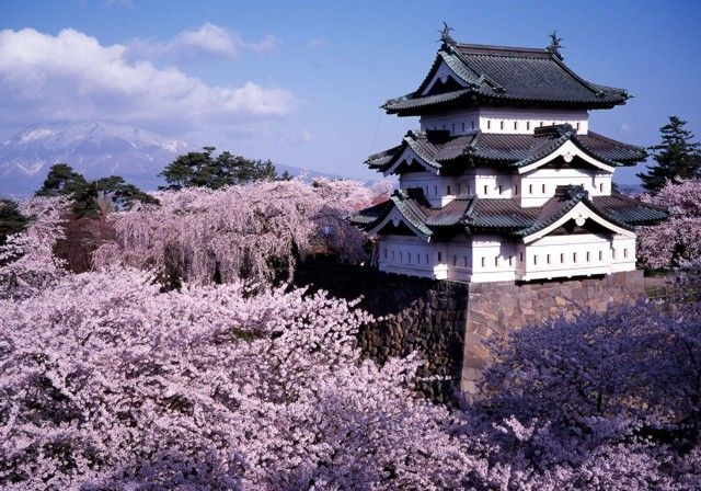 Hirosaki Castle. Hirosaki is located in the north of Honshû. Can't wait to see this!!
