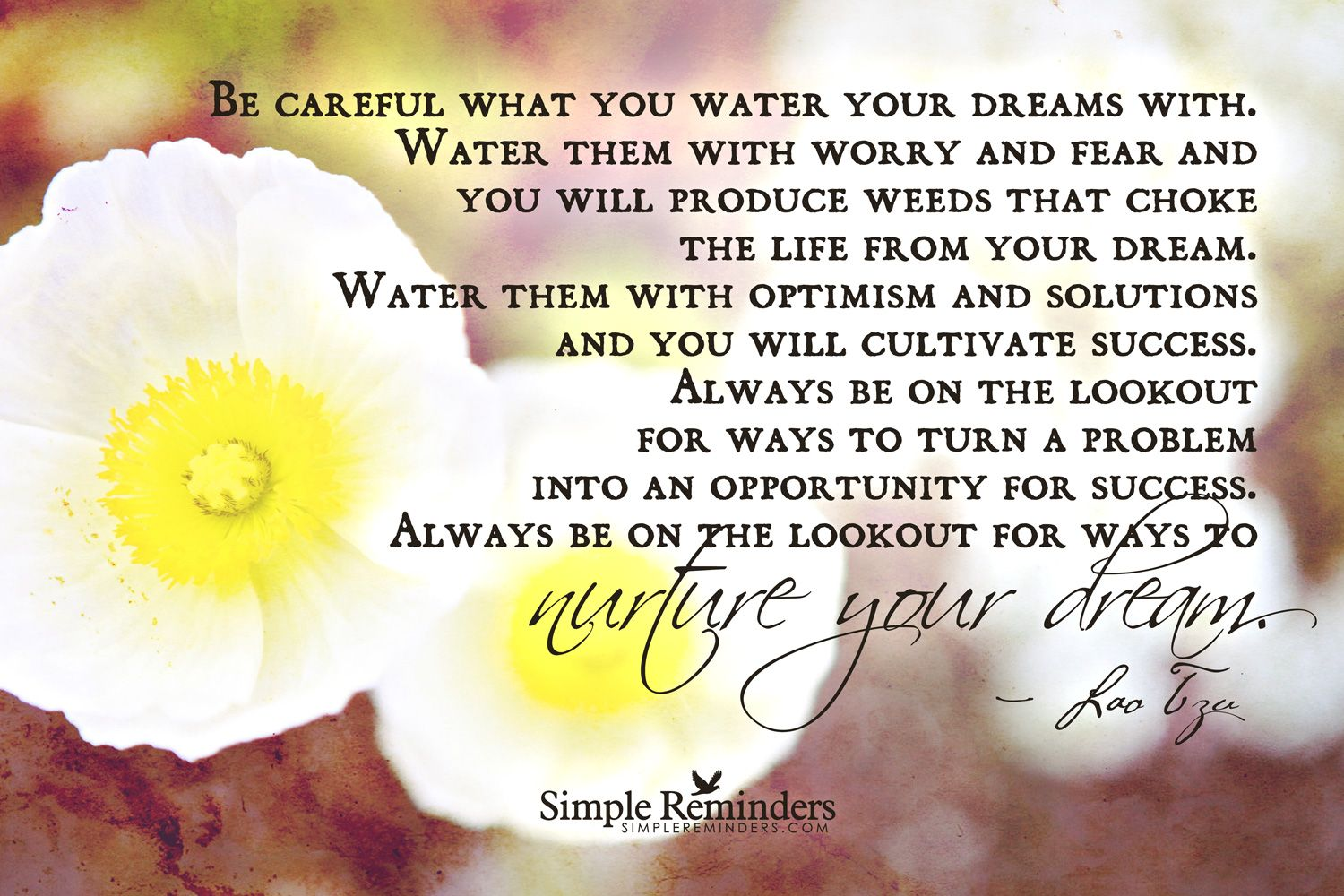 """Be careful what you water your dreams with. Water them with worry and fear and you will produce weeds that choke the life from your dream. Water them with optimism and solutions and you will cultivate success. Always be on the lookout for ways to turn a problem into an opportunity for success. Always be on the lookout for ways to nurture your dream."""