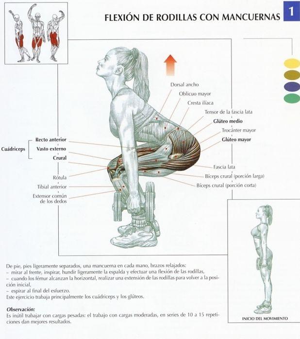 tipos de ejercicios con pesas tienes mancuernas ponte