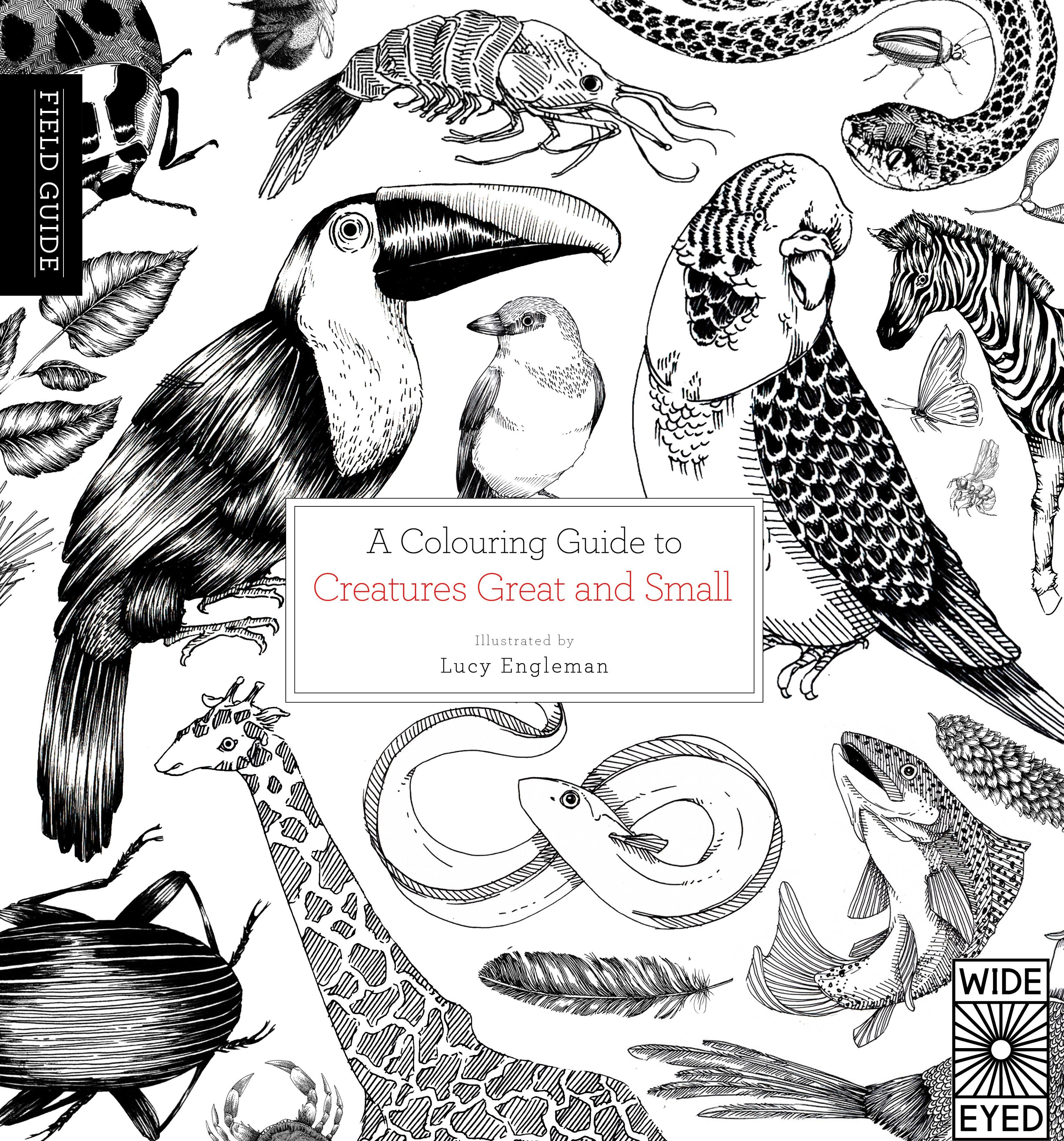 An Informative Inspirational Colouring Guide To Creatures Great And Small The Field