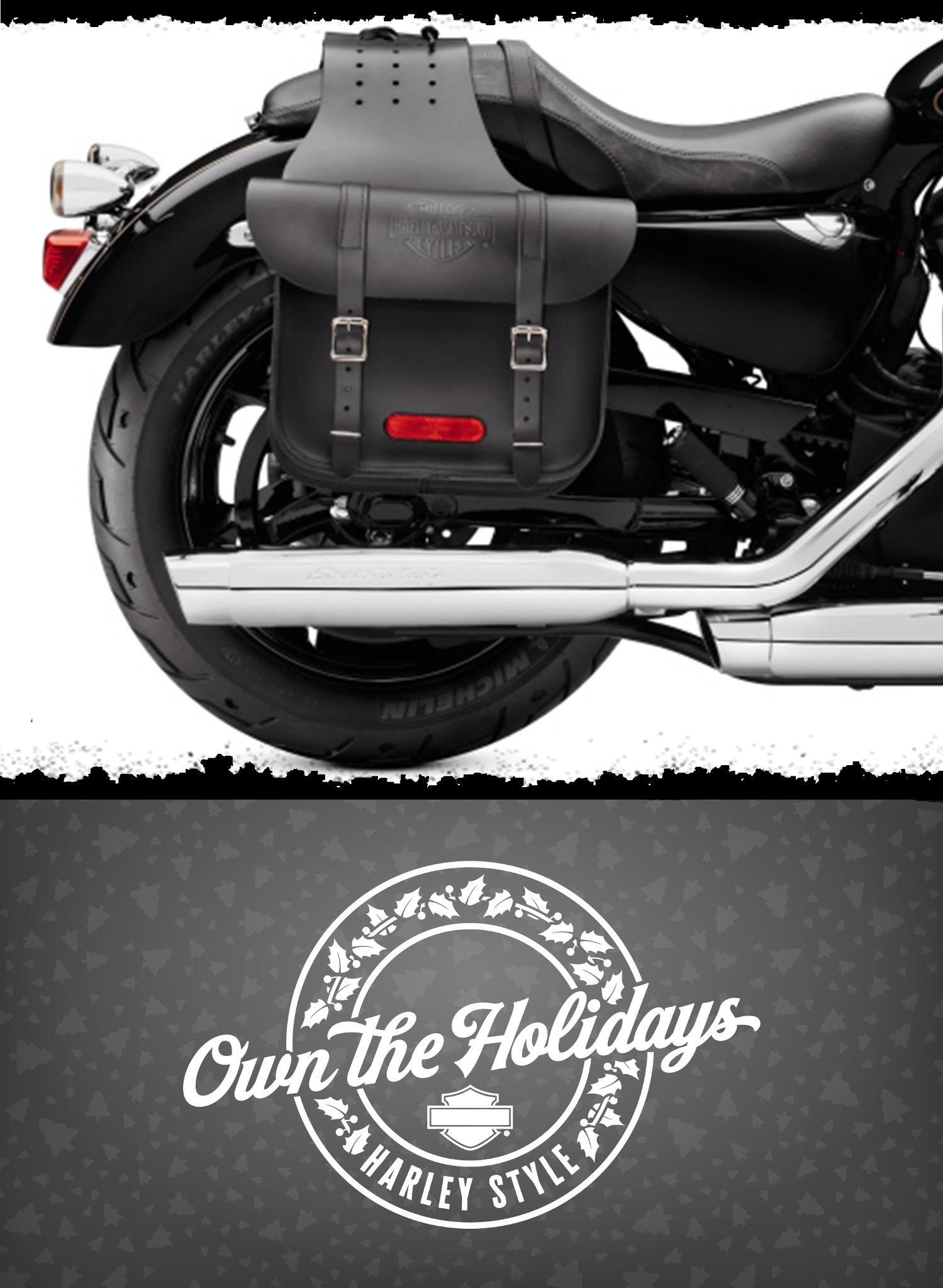 Harley Davidson Saddlebags: Leather Throw-Over Saddlebags