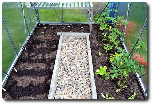 Gewachshaus Bepflanzen Google Suche Plants And Gardening