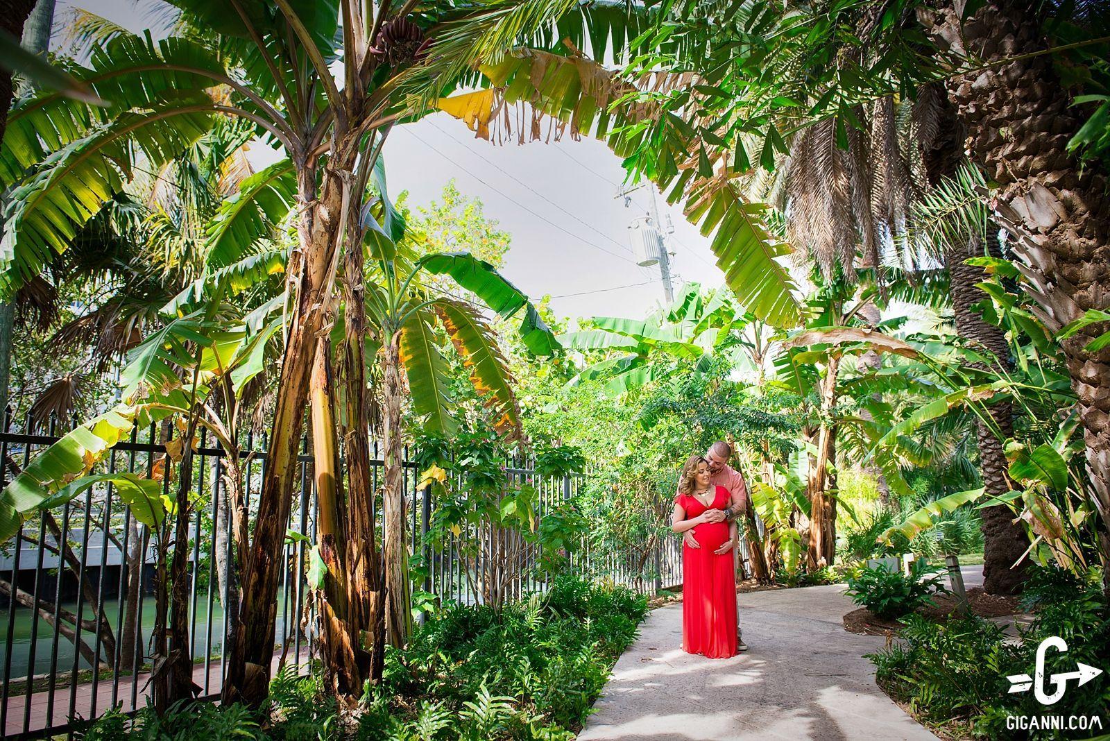 Miami Beach Botanical Garden MaternityPhotos   Miami Beach Botanical ...