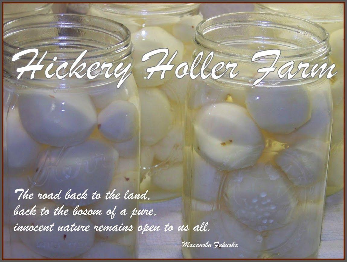Hickery Holler Farm  Blackberry Pie Filling