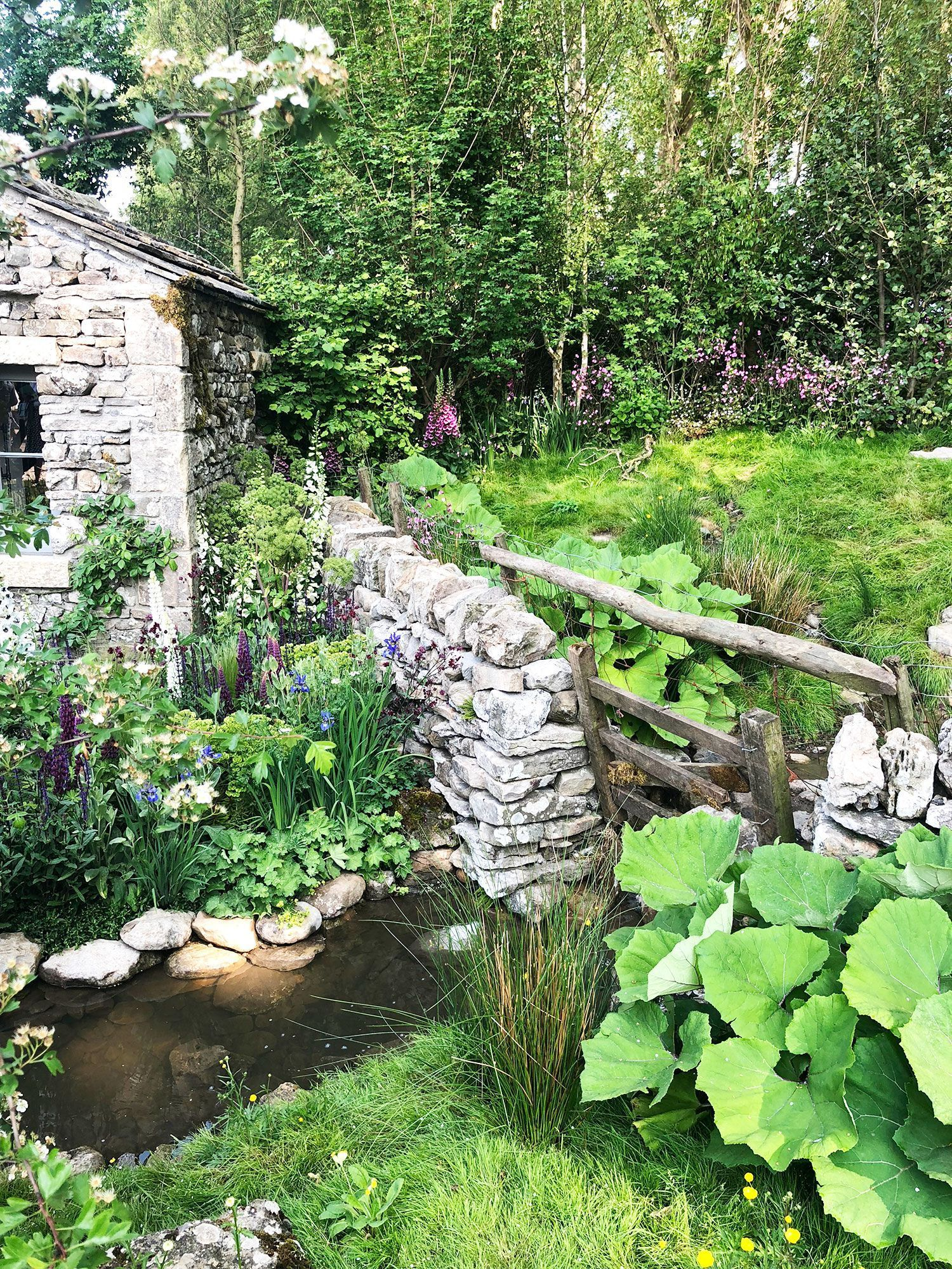 The winners of the Chelsea Flower Show People's Choice