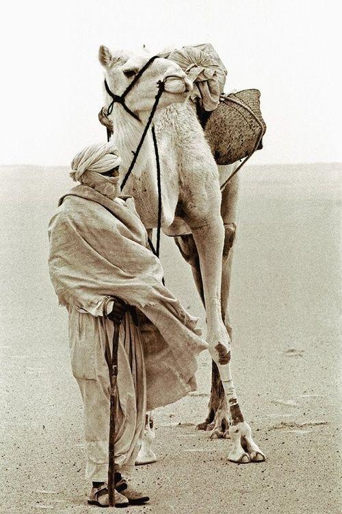 Tuareg and camel in the Desert