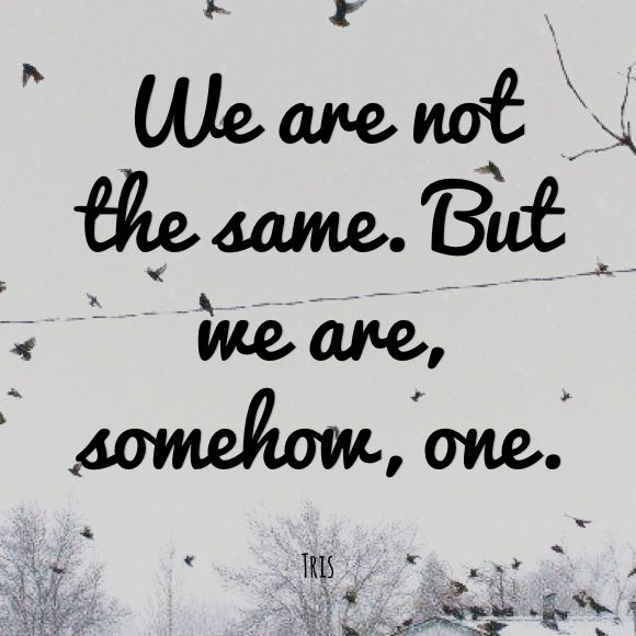 'We are not the same,but we are somehow,one.'-Tris♥Four