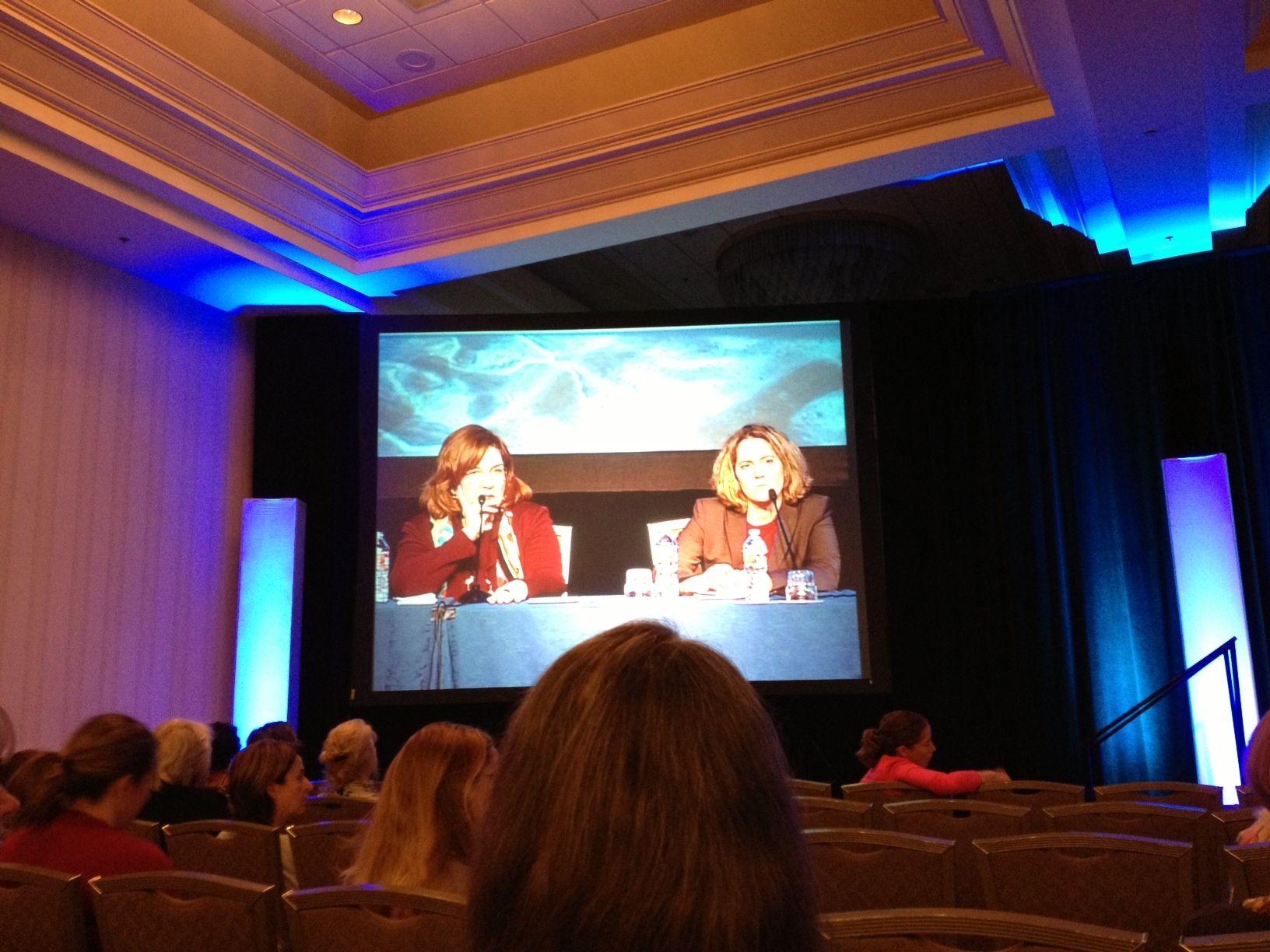 Gayle Lee (APTA) and Christina Metzler (AOTA) participate
