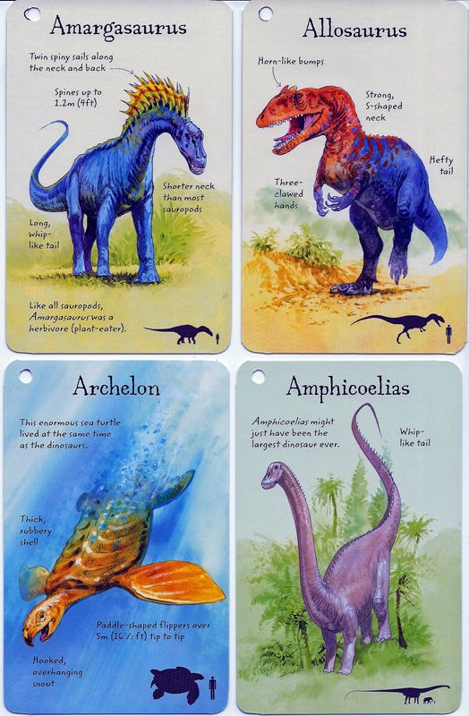 Front View Of Previous Cards From Dinosaurs Facts Cards
