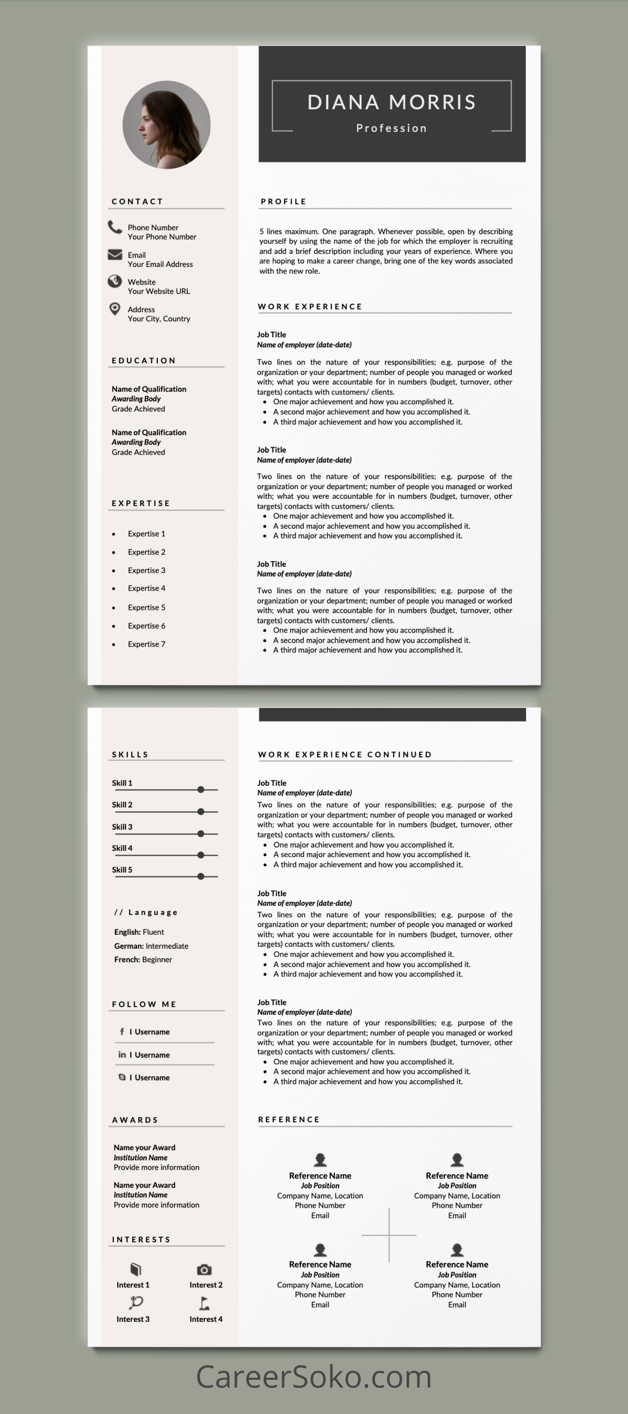 Pin On Cv And Resume Templates