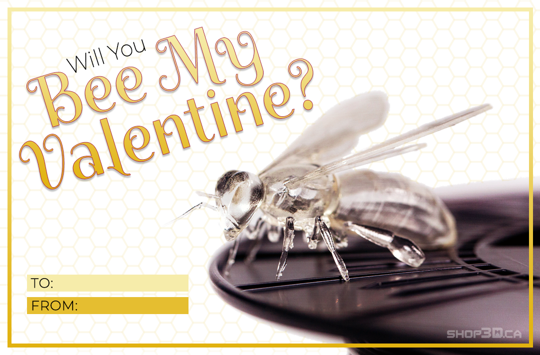 Will you Bee My Valentine? Printing solution, 3d