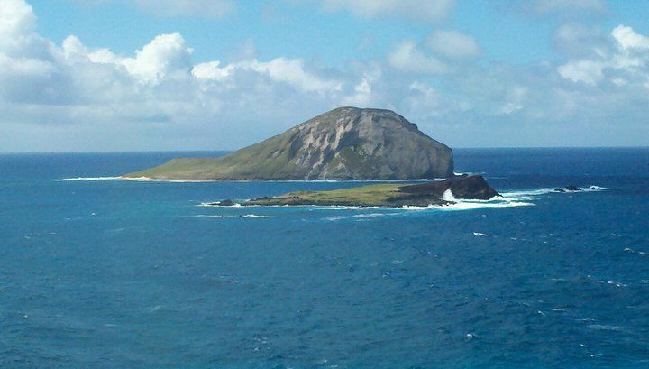 Turtle Island Oahu Hawaii