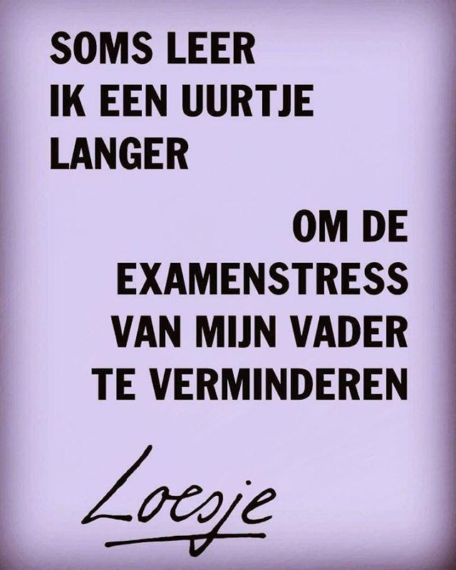 2,162 vind-ik-leuks, 58 reacties - Loesje (@loesjevdposters) op Instagram: '#loesje #examens #instafunny #ouders #pubers'
