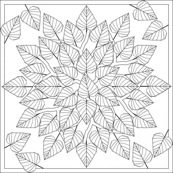 Mandala D Autunno 6 Passi Adult Coloring Pages Coloracao