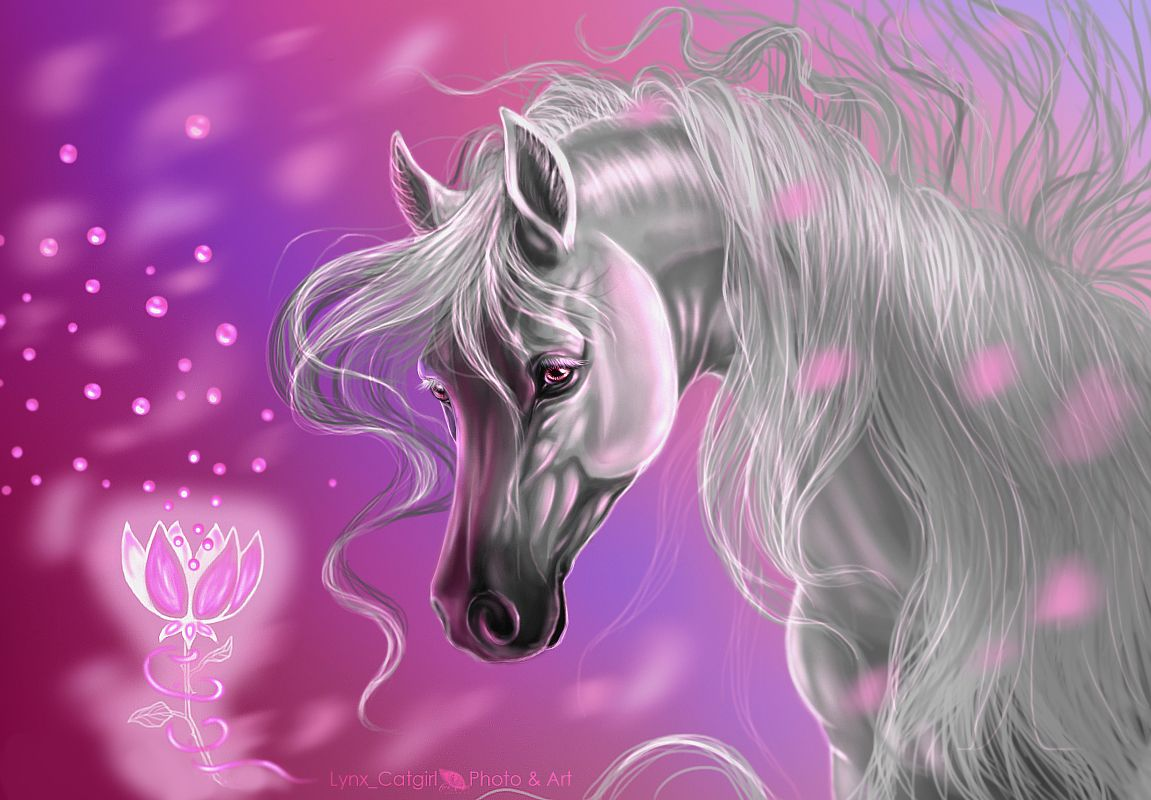 Cool Wallpaper Horse Rose - f8d8632c39ca61e300de029b41d349f0  Collection_904640.jpg