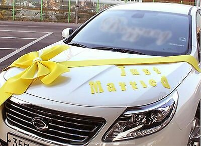 Wedding car decorations                                                                                                                                                      More
