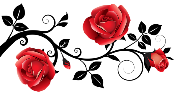 Red And Black Decorative Roses Png Clipart Image Simple Flower Drawing Roses Drawing Rose Clipart