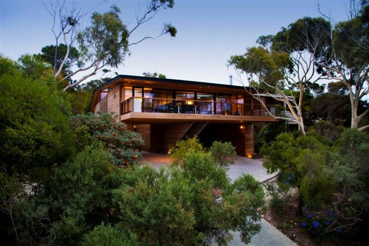Citriodora House By Seeley Architects For The Home Tree House Designs House Home Magazine House Design