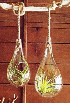 Glass Hanging Terrariums Modern Indoor Pots And Planters Aha