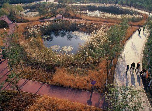 Tianjin Qiaoyuan Wetland Park by Turenscape