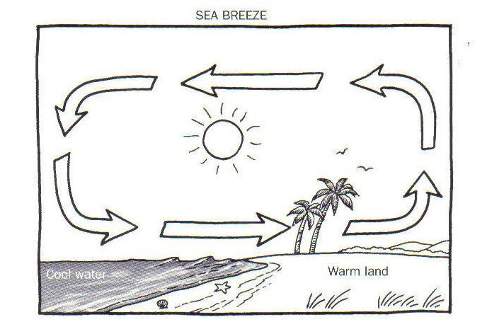 Worksheets Sea Breeze Diagram land and sea breeze diagram worksheet pinterest worksheet