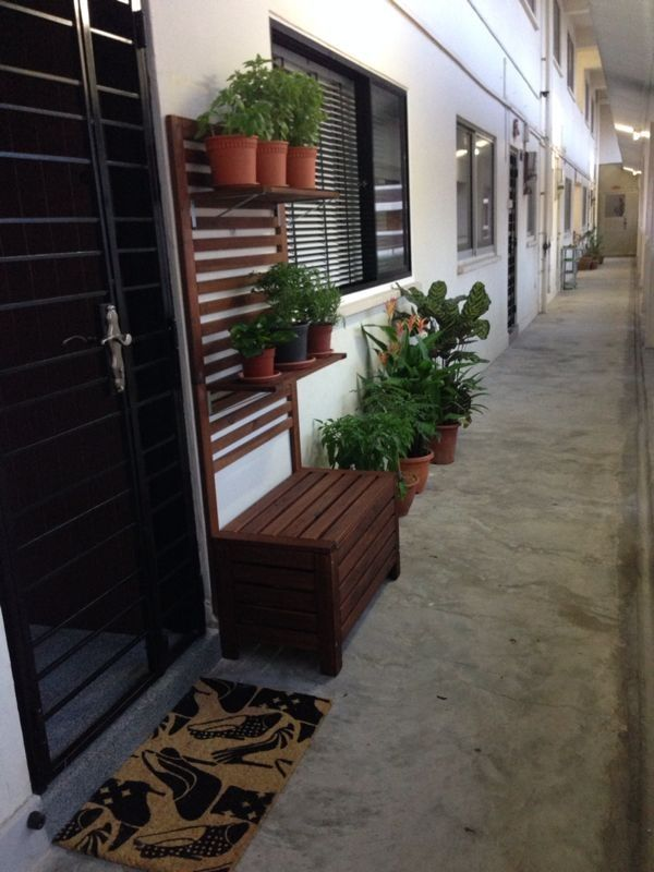 Singapore Hdb Living Room Design: Our Herbs Are Doing Quite Well! (You Can Read All About