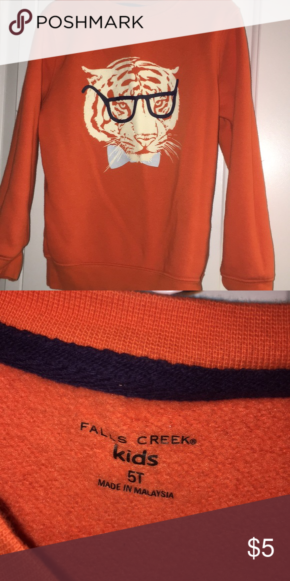 c993a52f1c5 Boys 5T Tiger with Glasses Sweatshirt Boys 5T Tiger with Glasses Sweatshirt  Falls Creek Shirts   Tops Sweatshirts   Hoodies