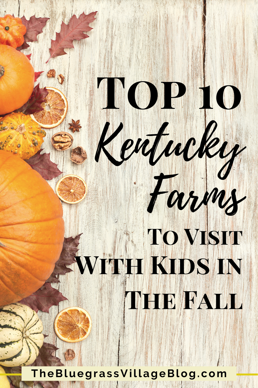 Top 10 Kentucky Farms To Visit With Kids In The Fall In 2020 Kentucky Farms Autumn Activities For Kids Kentucky