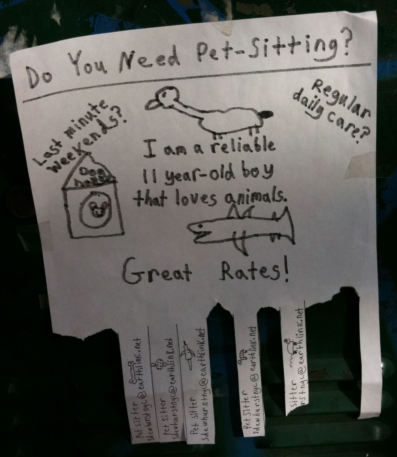 15 cool babysitting flyers 14 babysitting flyers pet sitting flyer court st brooklyn 2010