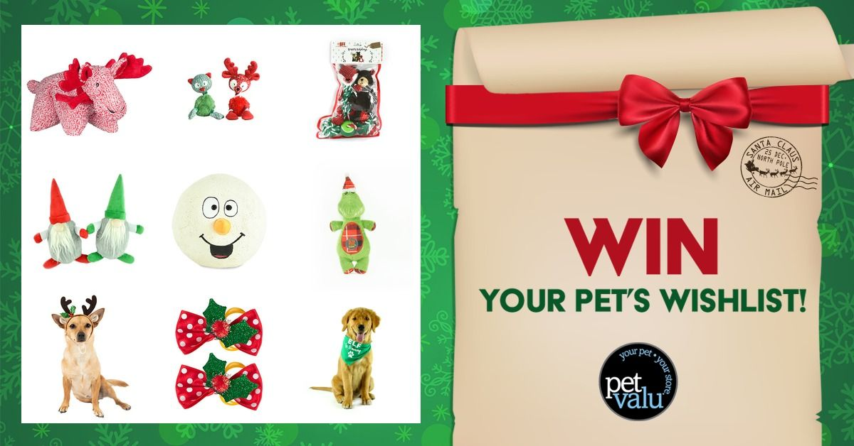 Dear Santa I Just Created My Pet S Wishlist From Pet Valu You Can Enter Too Using My Link And I Ll Earn A Bonus Entry Your Pet Pets Dear Santa