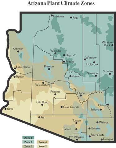 f8df96bd8b137fceb2b18e4e90c90423 - What Gardening Zone Is Phoenix Arizona