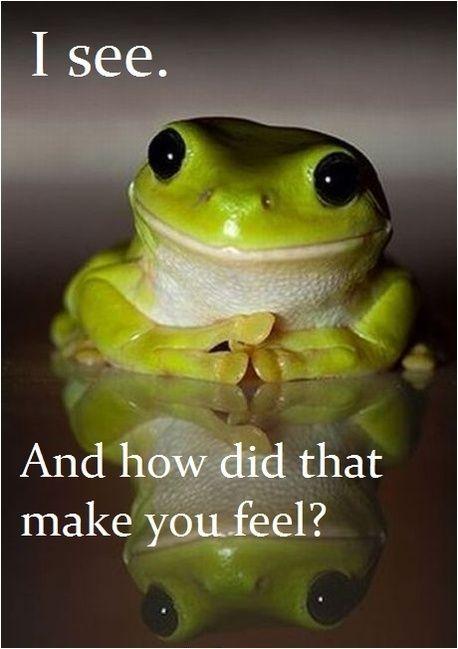 Terapi Frog Sjovt Billede Sosialt Arbeid Dyr Og Kjaeledyr Dyr