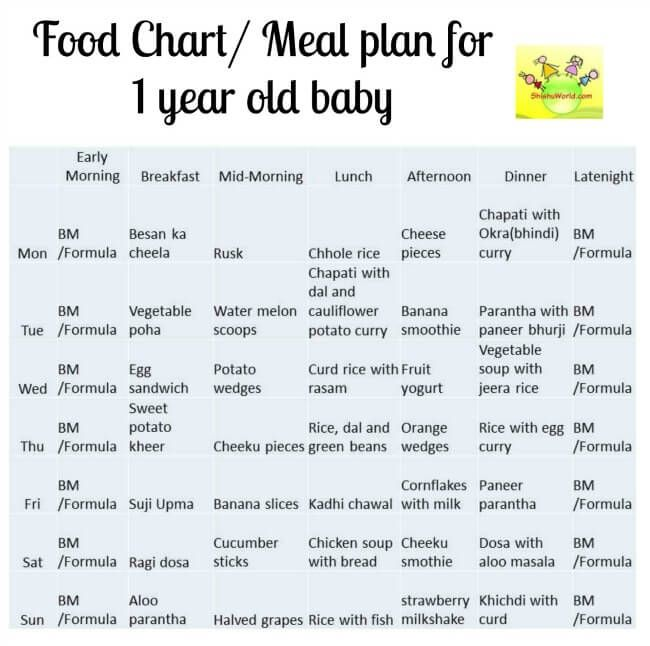 Food Chart/ Meal Plan For 12 Months / 1 Year Old Baby