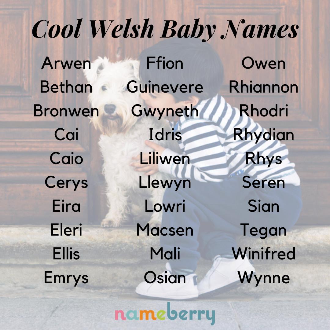 Welsh Names Celebrate St David S Day In 2021 Welsh Names Name Inspiration Names