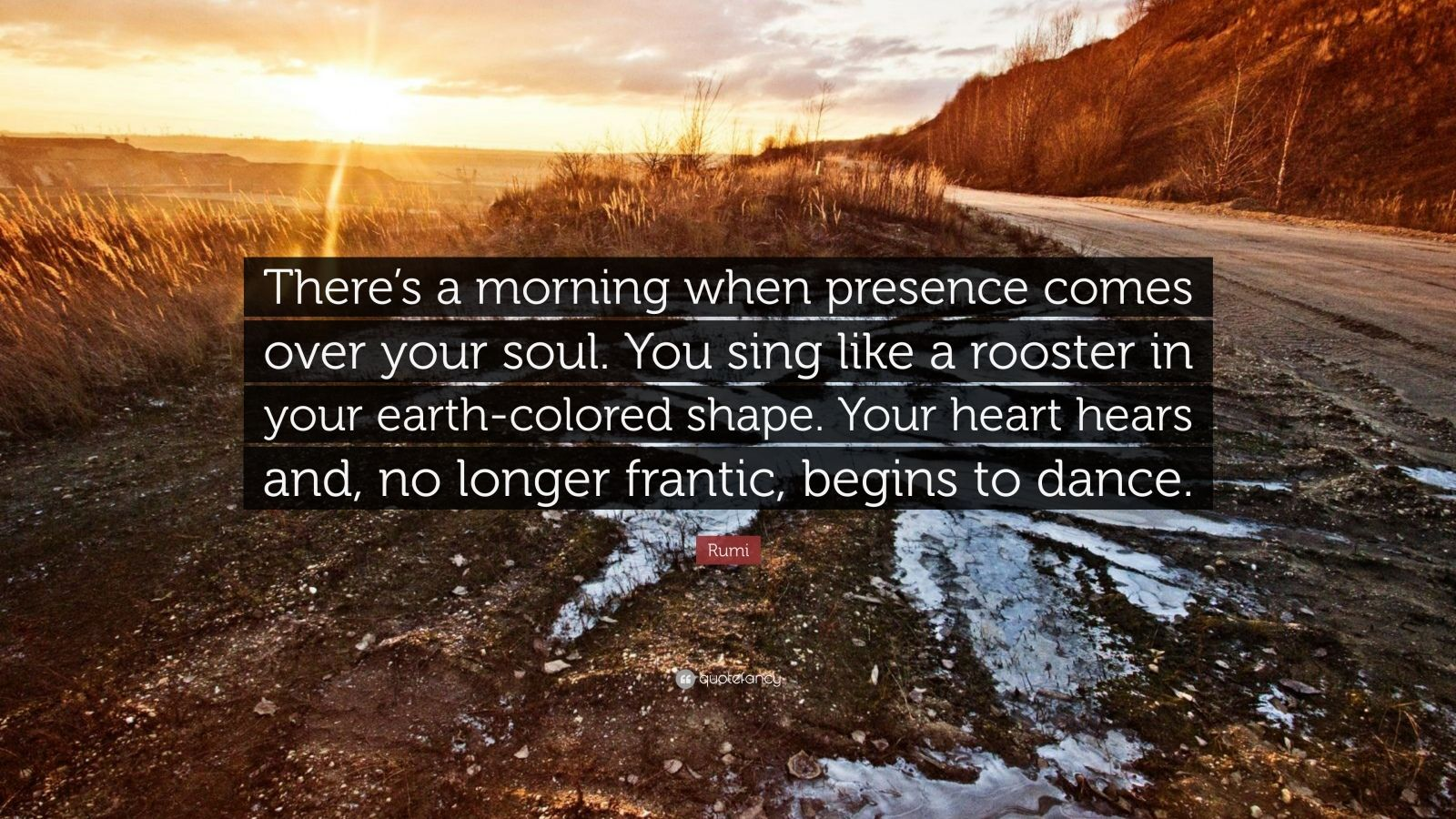 Rumi Quote Theres A Morning When Presence Comes Over Your Soul