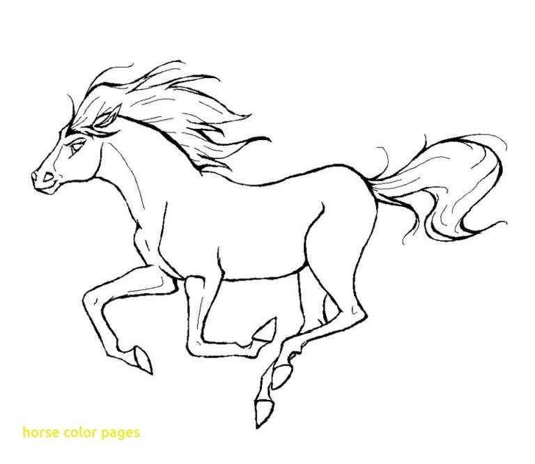 Best Horse Color Pages With Running Horse Coloring Pages Fun