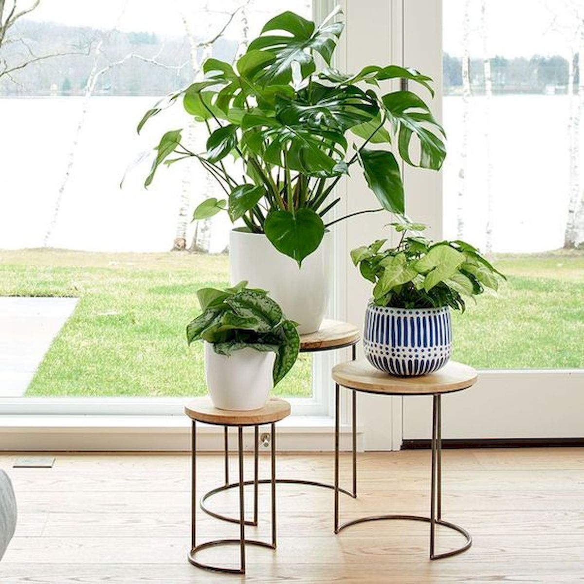 50 Best Indoor Garden For Apartment Design Ideas And ... on Hanging Plants Stand Design  id=68262